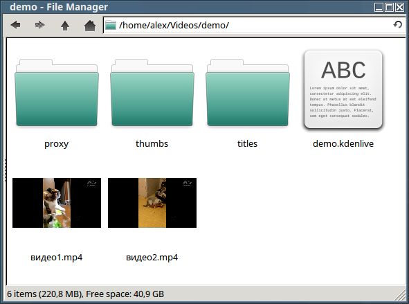 Файл естественно сохранять в каталоге проекта под именем demo.kdenlive