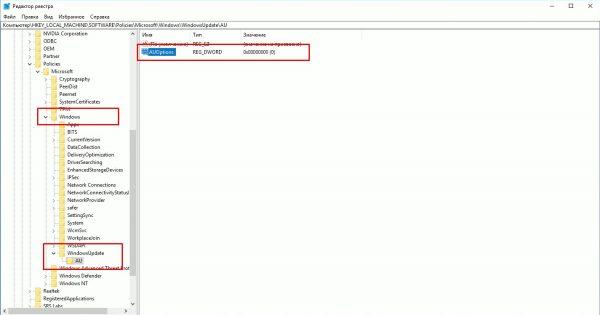 Нажимаем «HKEY_LOCAL_MACHINE», открываем программное обеспечение, затем переходим к «AU»