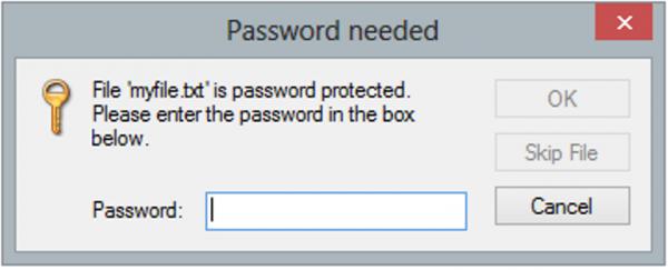 При открытии файла внутри zip-файла выскочит окно с просьбой ввести пароль