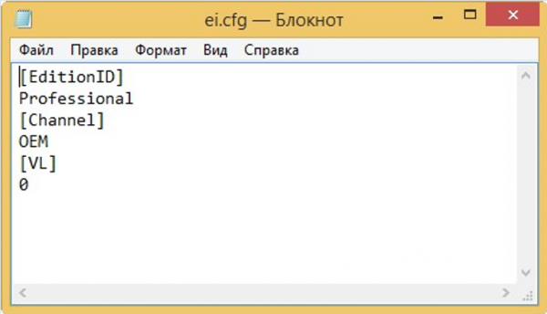 Создаем файл «ei.cfg»