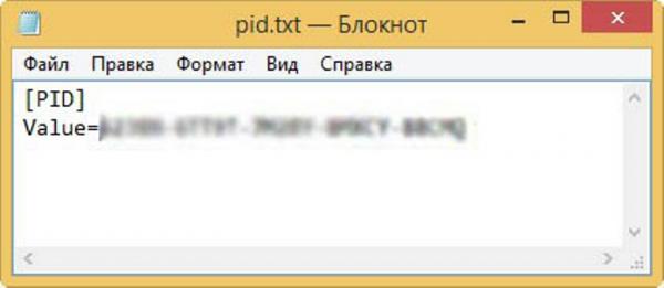 Создаем файл «pid.txt»
