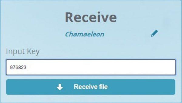Вводим код на главной страничке, нажимаем «Receive file»