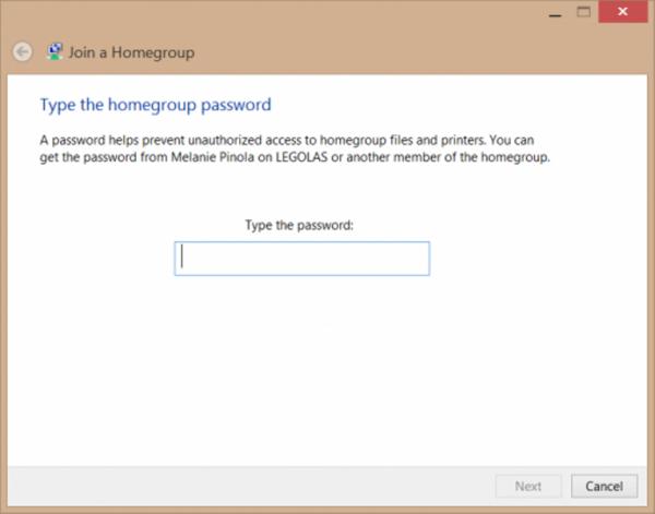 Вводим пароль домашней группы