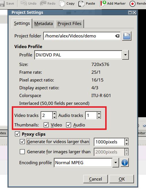 Выбираем число дорожек видео и аудио