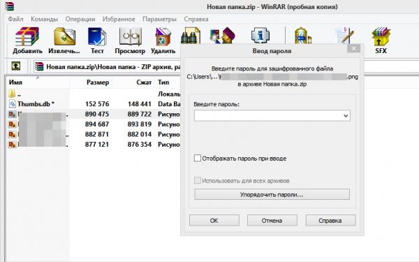 Защищенный паролем ZIP-файл