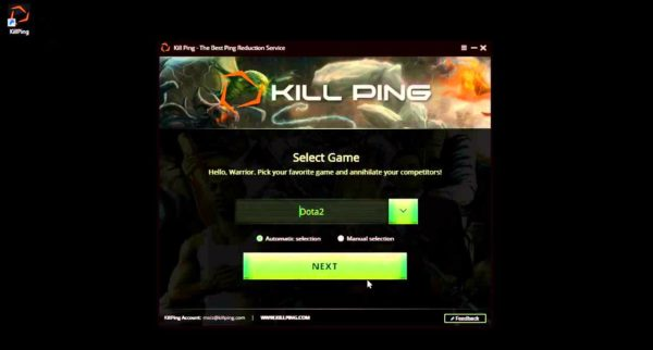 Интерфейс программы «Kill Ping»