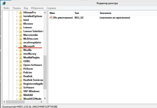 Открываем раздел «Microsoft» двойным щелчком левой кнопки мыши
