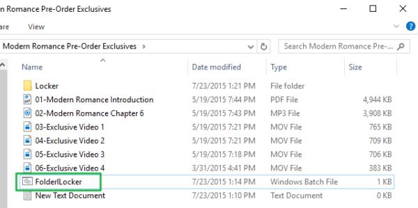 Открываем «FolderLocker»