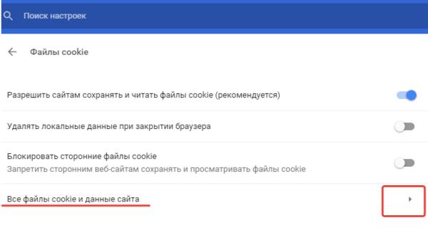 Открываем пункт «Все файлы cookie и данные сайта»