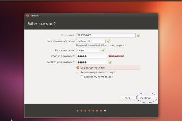 Вводим имя, пароль, настраиваем параметры для входа, нажимаем «Continue»
