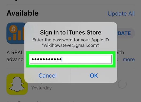 Вводим пароль Apple ID