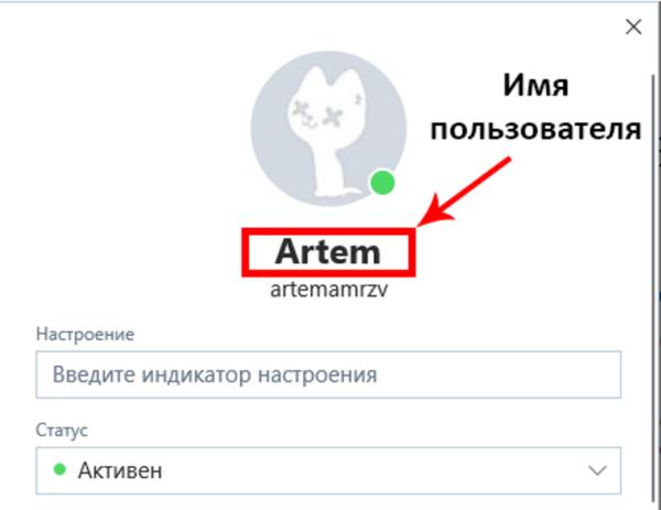 Имя пользователя находим сразу же под фото профиля