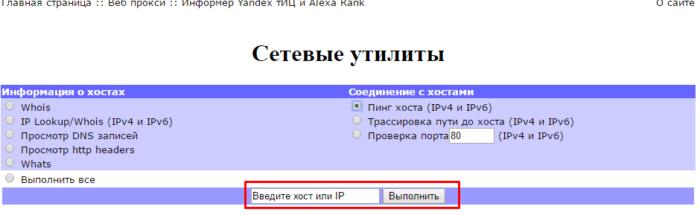 Вводим хост или IP, нажимаем кнопку «Выполнить»