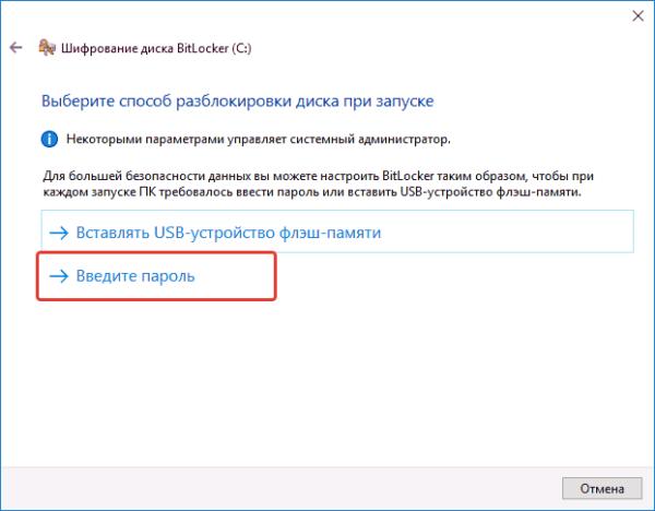 Выбираем один из способов разблокировки диска при запуске, для примера выбран способ «Введите пароль»