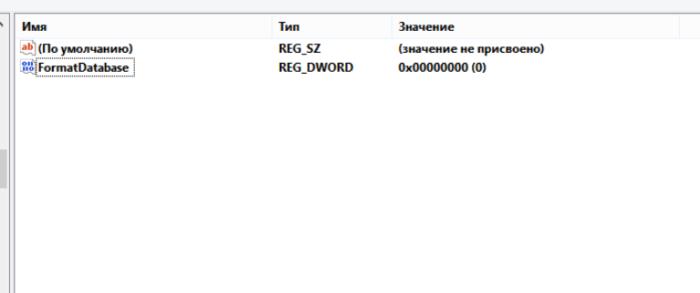 Называем параметр «FormatDatabase», щелкаем дважды левой кнопкой мыши