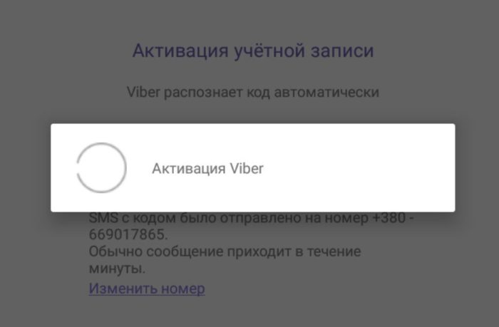 Вписываем код из смс и ждем активации приложения