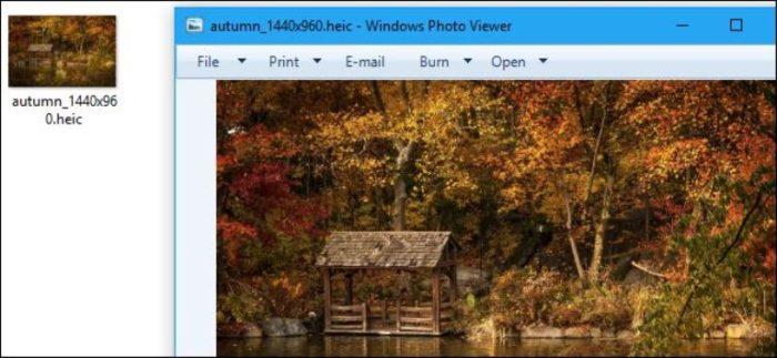 После установки Copytrans HEIC и перезагрузки компьютера возможно просматривать файлы HEIC обычным средством просмотра изображений