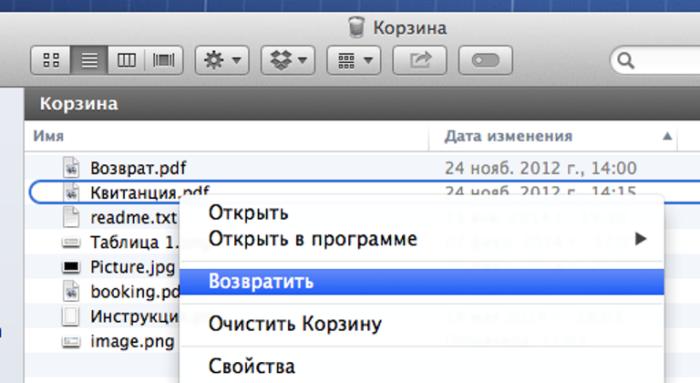 Правой кнопкой мышки щелкаем по файлу, выбираем пункт «Очистить корзину»