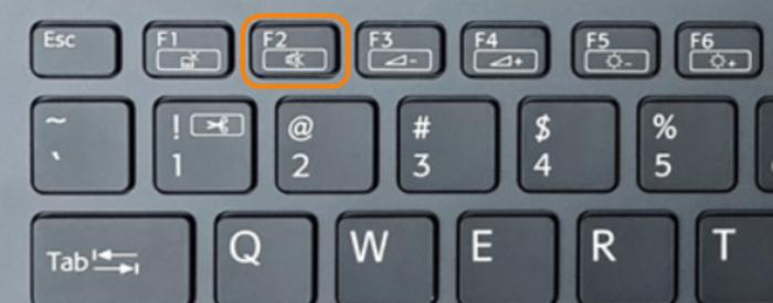 При появлении на экране ноутбука надписи VAIO нажимаем и удерживаем клавишу «F2»