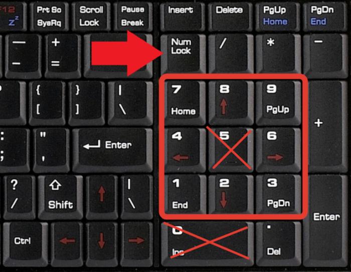 Для управления клавиатурной мыши используются все цифровые клавиши, помимо «0» и «5»