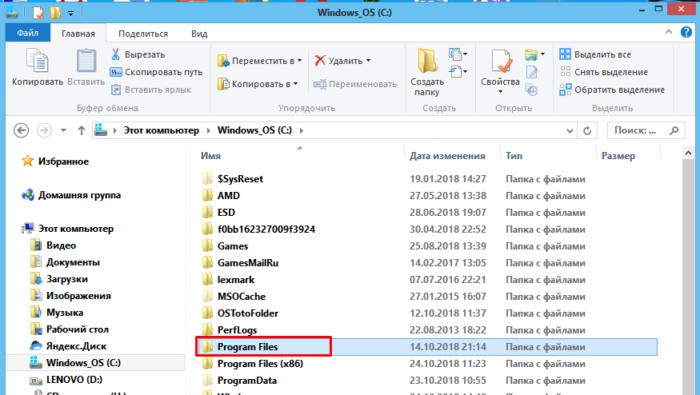 Находим и открываем папку «Program Files»