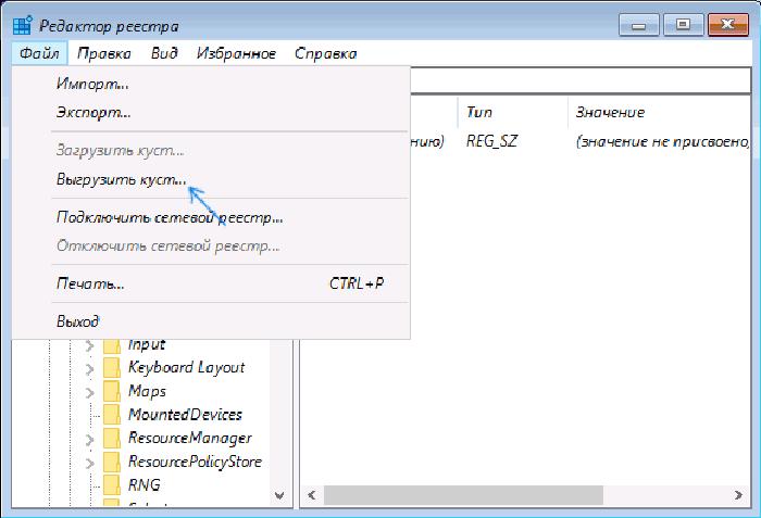 Выделяем мышкой созданный ранее раздел, нажимаем «Файл», затем «Выгрузить куст»