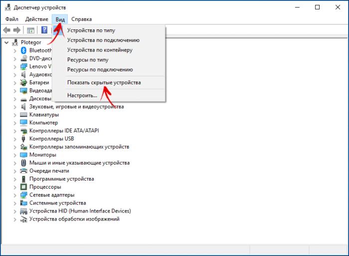 Кликаем по меню «Вид» и активируем параметр, отвечающий за показ скрытых устройств