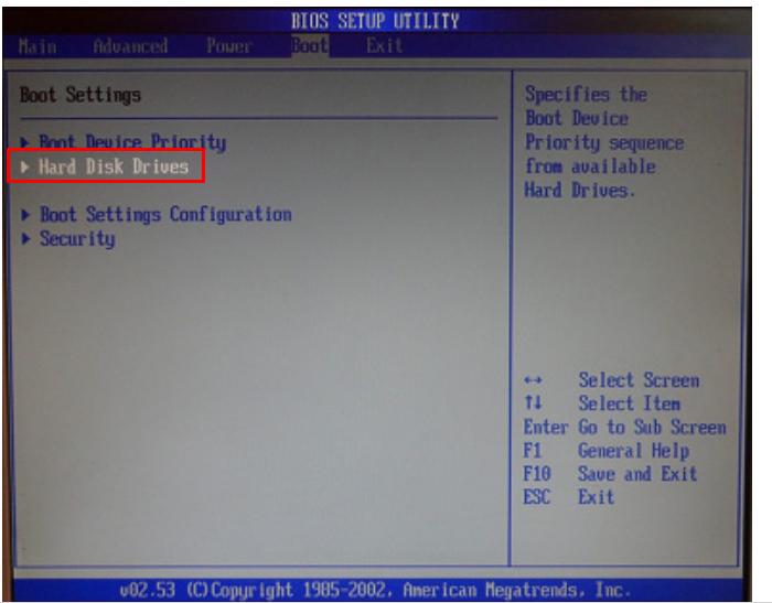 Выбираем «Hard Disk Drives», нажимаем клавишу «Enter»