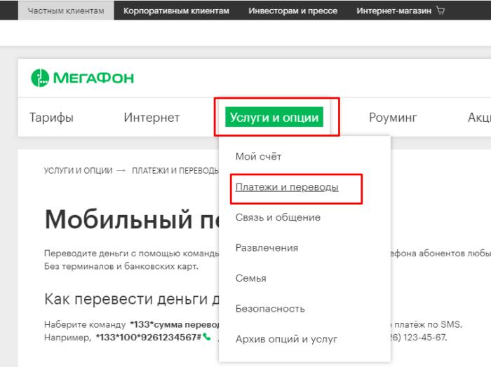 Открываем раздел «Услуги и опции», а затем подраздел «Платежи и переводы»