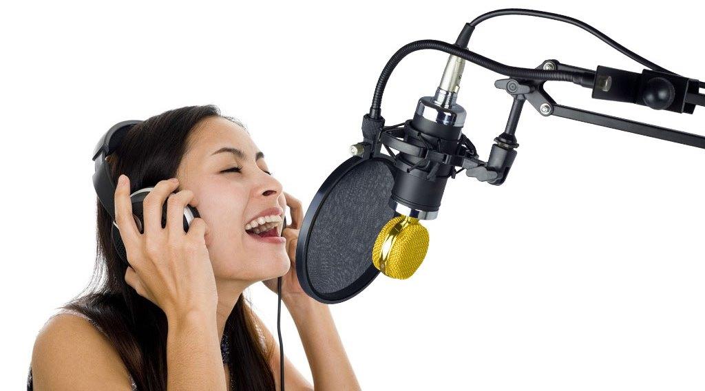 Поп-фильтр для устранения нежелательных призвуков и защиты мембраны студийного микрофона