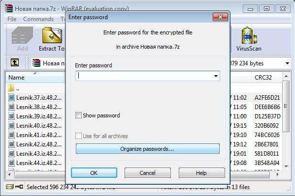 Запрос пароля при открытии файлов