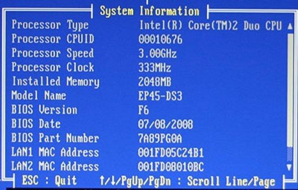 Находим информацию о памяти в разделе «System Information» или «Hardware Information»