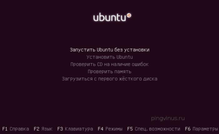 Выбираем вариант «Запустить Ubuntu без установки»