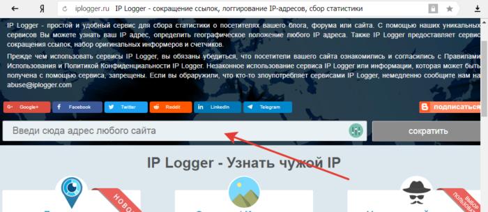 Открываем сайт IPLOGGER