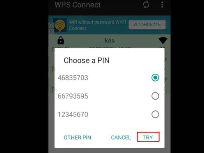 Ставим галочку на один из вариантов паролей, нажимаем кнопку «Try»